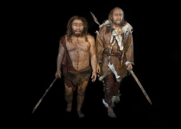 Neandertalczyk i Homo sapiens.
