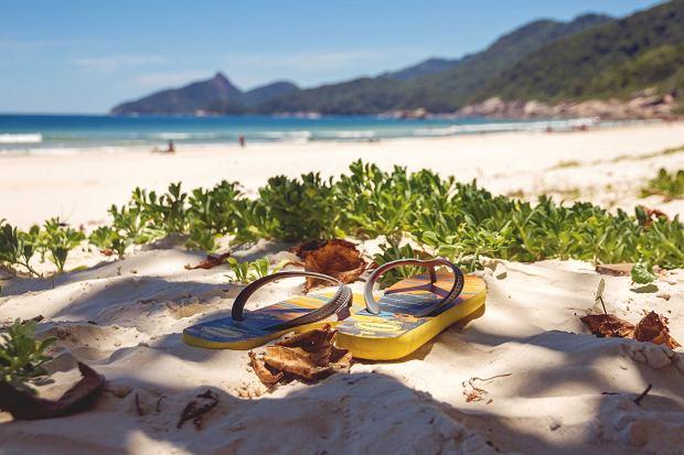 Para japonek na plaży Rio de Janeiro w Brazylii. To w tym kraju narodziła się najsłynniejsza światowa marka japonek / Fot. IcyS/Shutterstock.com
