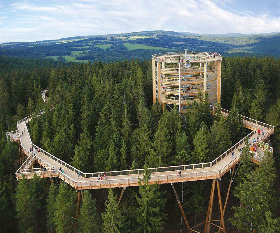 Wieża obserwacyjna ma 40 metrów.