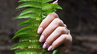 Łatwe wzorki na paznokcie - w 2020 królują wzory geometryczne i kwiatowe.