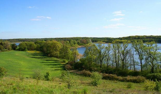 Typowy wielkopolski krajobraz - jeziora/shutterstock