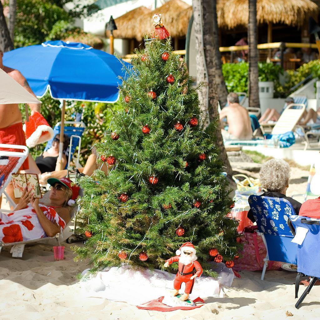 Święta na plaży? Marzenie!