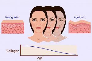 Kolagen naturalny: właściwości. Jak kolagen wpływ na skórę twarzy i włosy