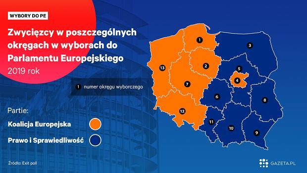 Wybory do europarlamentu 2019. Zwycięzcy w poszczególnych okręgach