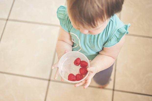 Rola diety w budowaniu odporności