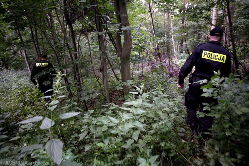 Policja w lesie (zdjęcie ilustracyjne)