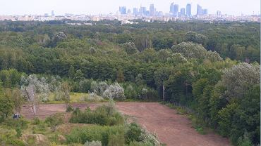 Na pierwszym planie teren dawnej bazy wojskowej w Lesie Bemowskim. Tu 15 domów chce zbudować deweloper powołując się na ustawę antykoronawirusową. Na horyzoncie - wieżowce śródmieścia Warszawy