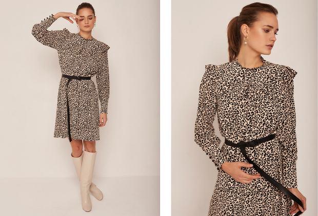 Sukienka Roxane - Madelle. Cena: 650 zł