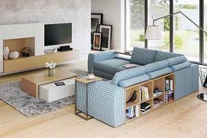 Sofa - klasyczna, rozkładana, wielofunkcyjna