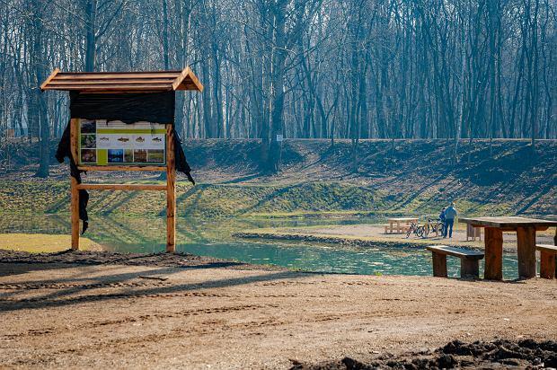 Zdjęcie numer 13 w galerii - Park Tysiąclecia w Sosnowcu w trakcie rewitalizacji.