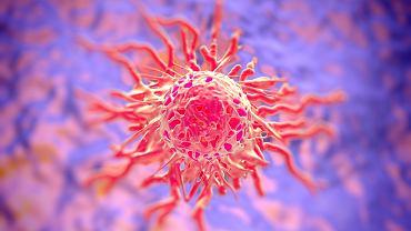 Rak szyjki macicy zbiera ogromne żniwo wśród kobiet w każdym wieku. Im szybciej zostanie rozpoznany, tym skuteczniej może być wyleczony.