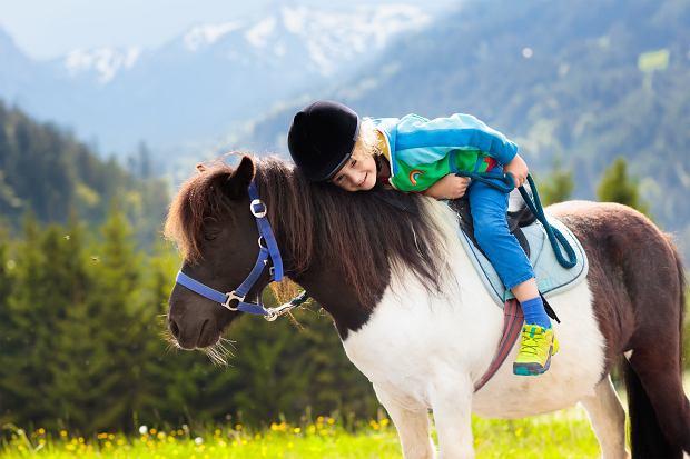Przedszkole jeździeckie