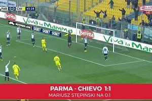 Serie A. Parma - Chievo 1:1. Mariusz Stępiński z kolejnym golem [ELEVEN SPORTS]
