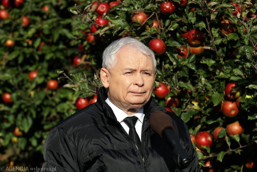 Taśmy Kaczyńskiego. Kim są krewni prezesa PiS?