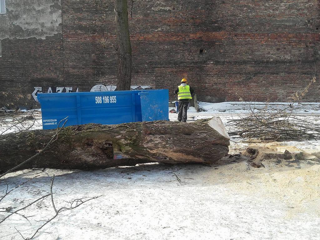 Przy ul. Stalowej w Warszawie trwa wycinka przedwojennych drzew.