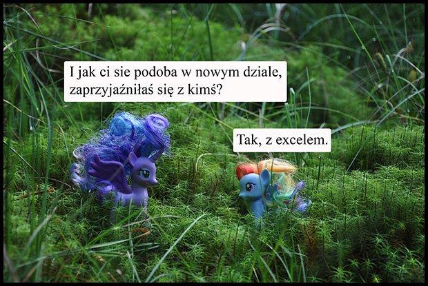 Z excelem też można /fot. Magda Acer
