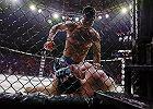"""Ekspert chce zakazać MMA! Sprawą zajmuje się parlament. """"To dziwne, że BBC zwiększa znaczenie tego sportu"""""""
