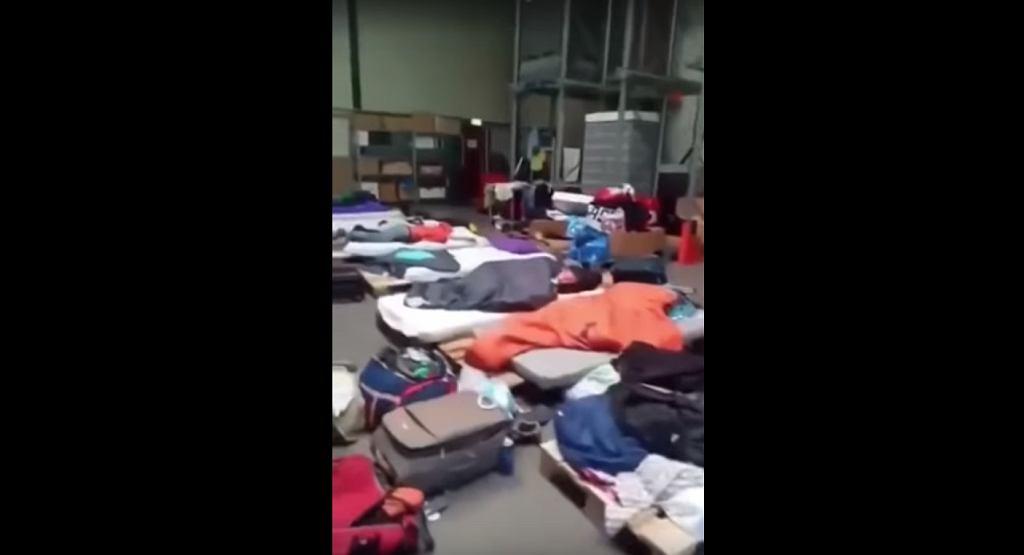 Polacy w Holandii spali na paletach
