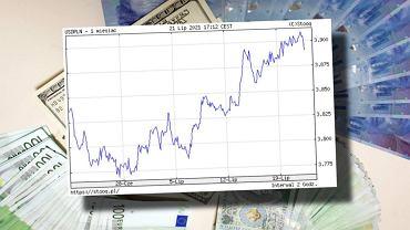 Złoty, a skromny. Polska waluta bardzo mocno dołuje w lipcu. Oto, co się dzieje [WYKRES DNIA]