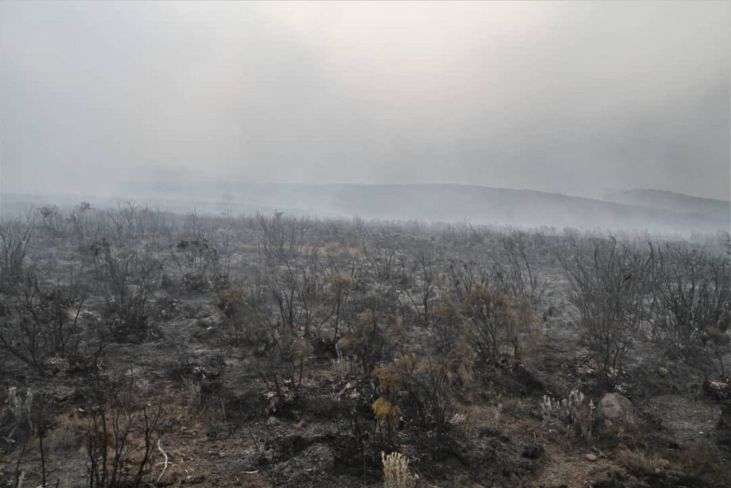 Pożar na Kilimandżaro