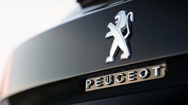 Peugeot (zdjęcie ilustracyjne)