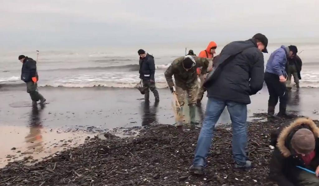 Morze wyrzuciło na brzeg bursztyn