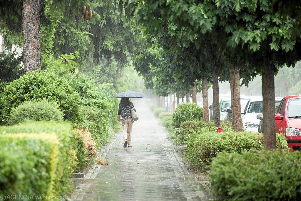 Pogoda na majówkę 2019. Meteorolodzy nie mają dla nas dobrych wieści