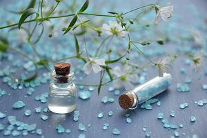 Perfumy Zara na wiosnę. Przegląd zapachów