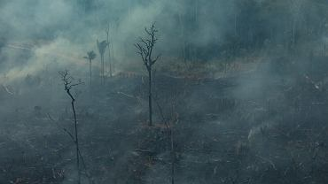 Pożary lasów w Amazonii
