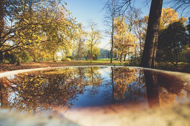 Park Chopina w Gliwicach