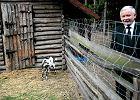 Rolnik wolno liczy straty. Czym żyje dziś polska wieś