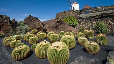 Lanzarote, Wyspy Kanaryjskie