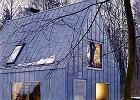 Srebrzysty dom w środku lasu