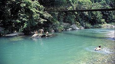 Górny bieg rzeki Liujiang, niedaleko Longsheng, południowe Chiny