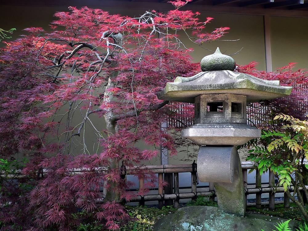 Kyoto, Japonia
