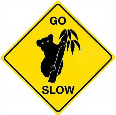 Uwaga na misie koala