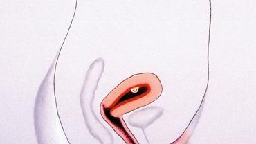 Badanie USG wykaże ciążę dopiero w drugim miesiącu ciąży