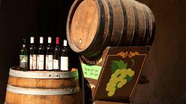 Winoteka w Trnavie