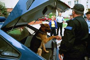 Psie kupy: sprzątają wszyscy oprócz policji