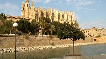Katedra w Palmie