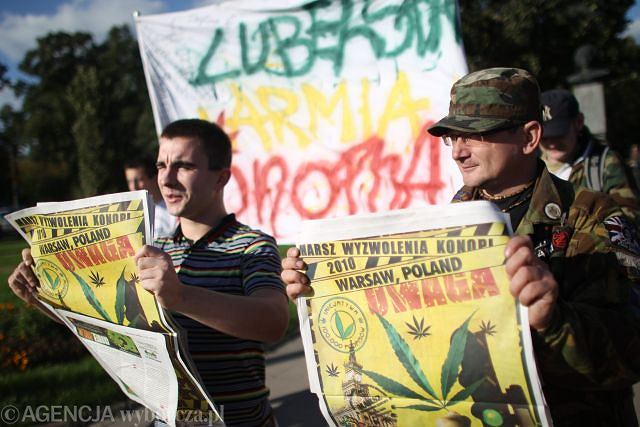 Demonstranci z Wolnych Konopi pod Sejmem
