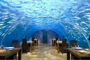 Niezwykłe restauracje