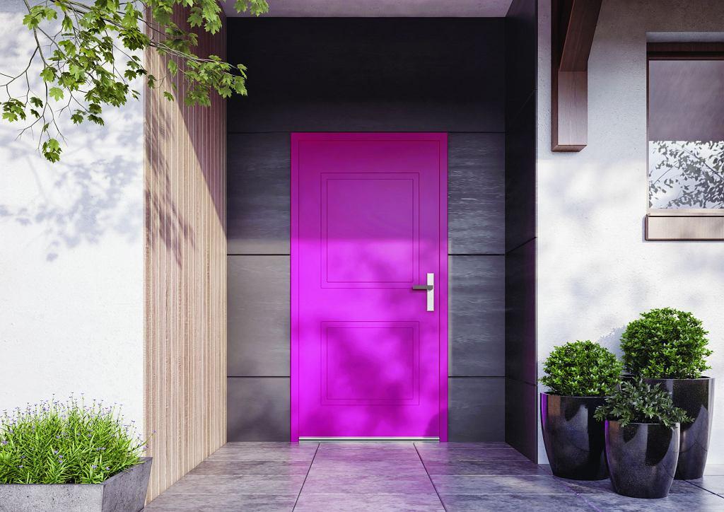 Drzwi Premium Vetrex - model Carre