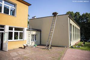 Pierwsza szkoła w Tychach ma zielony dach. Wiosną i latem będzie chłodno