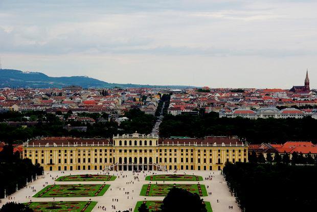 Praga, Lwów, Berlin, Wiedeń. Jak i za ile tam dojechać?