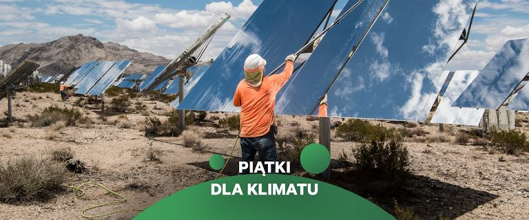 Polska 2050 - susze, huragany i żar z nieba? To zależy od nas