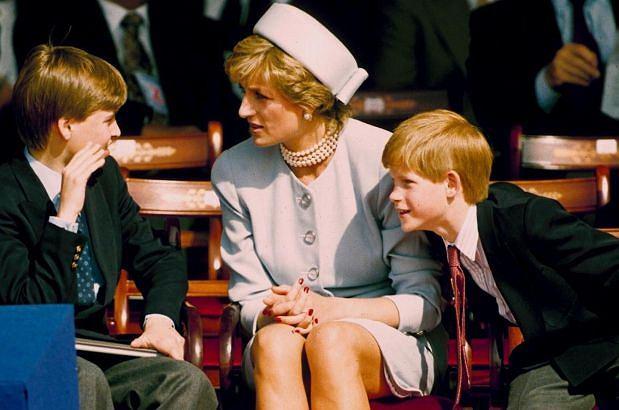 Księżna Diana, książę Harry, książę William