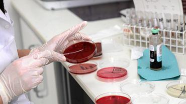 Bakteria New Delhi w szpitalu w Radomsku. Zakażonych jest trzech pacjentów (zdjęcie ilustracyjne)