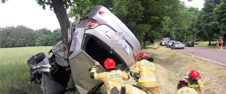 Parczew. Samochód wypadł z drogi i owinął się wokół drzewa. Na oczach policjantów