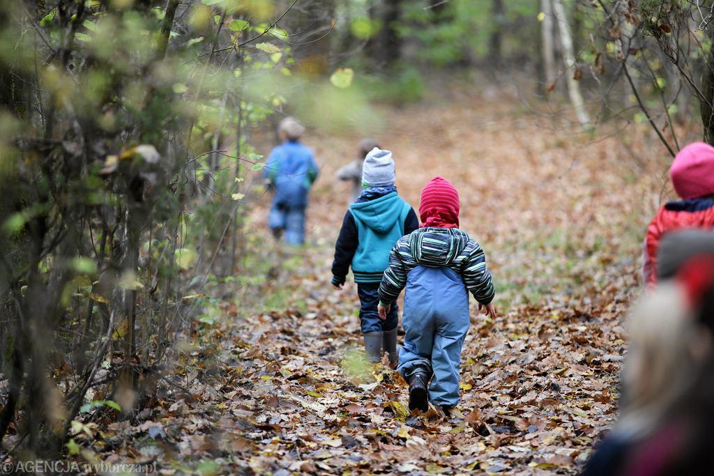 Leśne przedszkole 'Puszczyk'